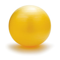 Exercise Ball Image