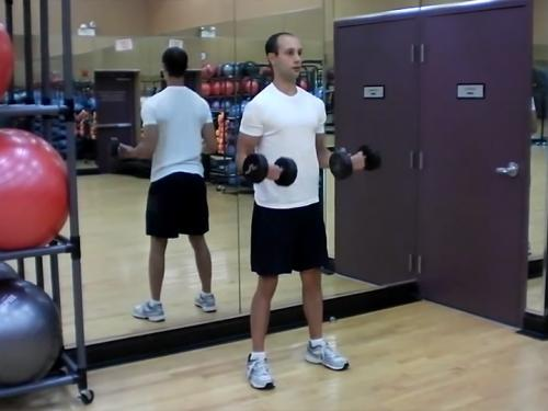 3-Part Curls / 21s (Dumbbell) Image