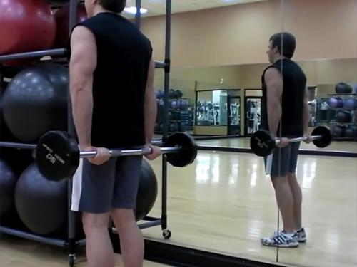 Behind-the-Back Wrist Curls (Barbell) Image