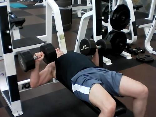 Bench Press Dumbbell Image