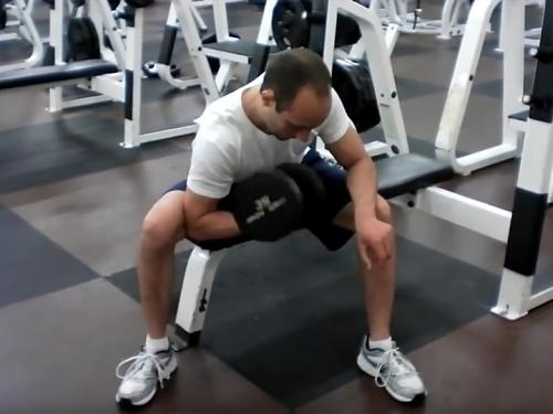 Concentration Curls (Dumbbell) Image