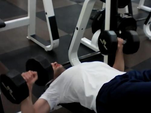 Decline Bench Press (Dumbbell) Image