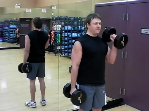 Hammer Curls Dumbbell Image