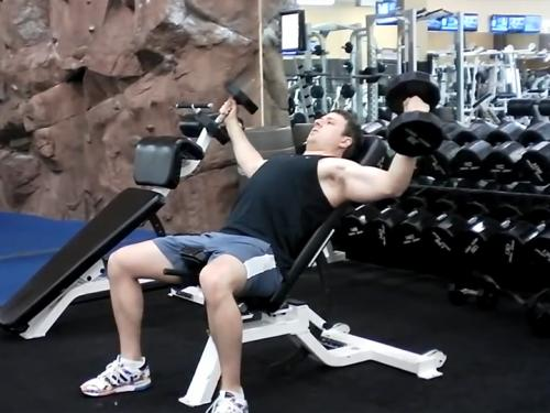 Incline Flys Dumbbell Image