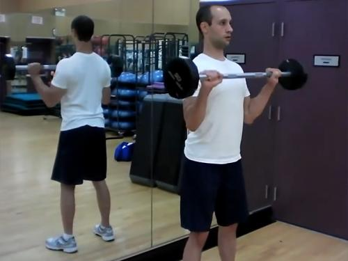 Reverse Curls (Barbell) Image