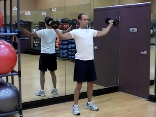 Reverse Overhead Laterals (Dumbbell) Image