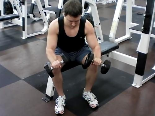Reverse Wrist Curls (Dumbbell) Image