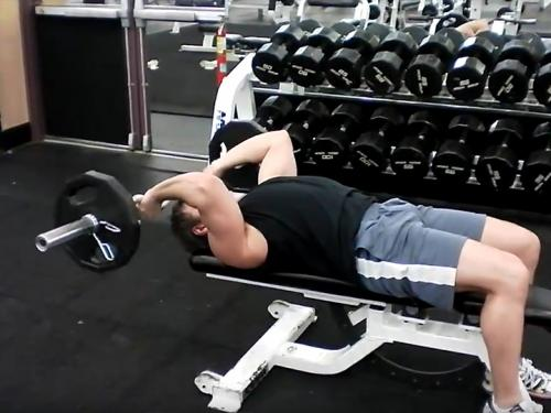 Skull Crushers / Lying Triceps Extensions (Barbell) Image