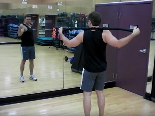 Standing Twists / Trunk Rotations (Barbell) Image