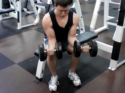 Wrist Curls (Dumbbell) Image