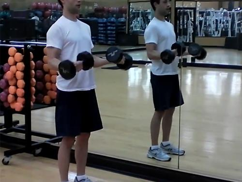 Wrist Rotations (Dumbbell)